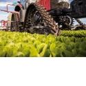 Chenille S-TECH 612/616 pour tracteurs maraîchers - S'adapte à vos champs et besoins pour en faire plus, et mieux