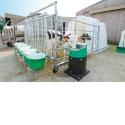 SUPERSTAR - La nouvelle niche collective SUPERSTAR de LA BUVETTE permet d'héberger 5 veaux âgés de 2 à 6 mois.