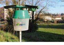 CapTrap - Piège à insectes innovant, intelligent et connecté : comptages en temps réel, système d'alerte et suivi sur une interface Web conviviale.